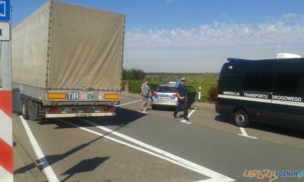 Pijany jak... kierowca TIRa  Foto: Wojewódzki Inspektorat Transportu Drogowego