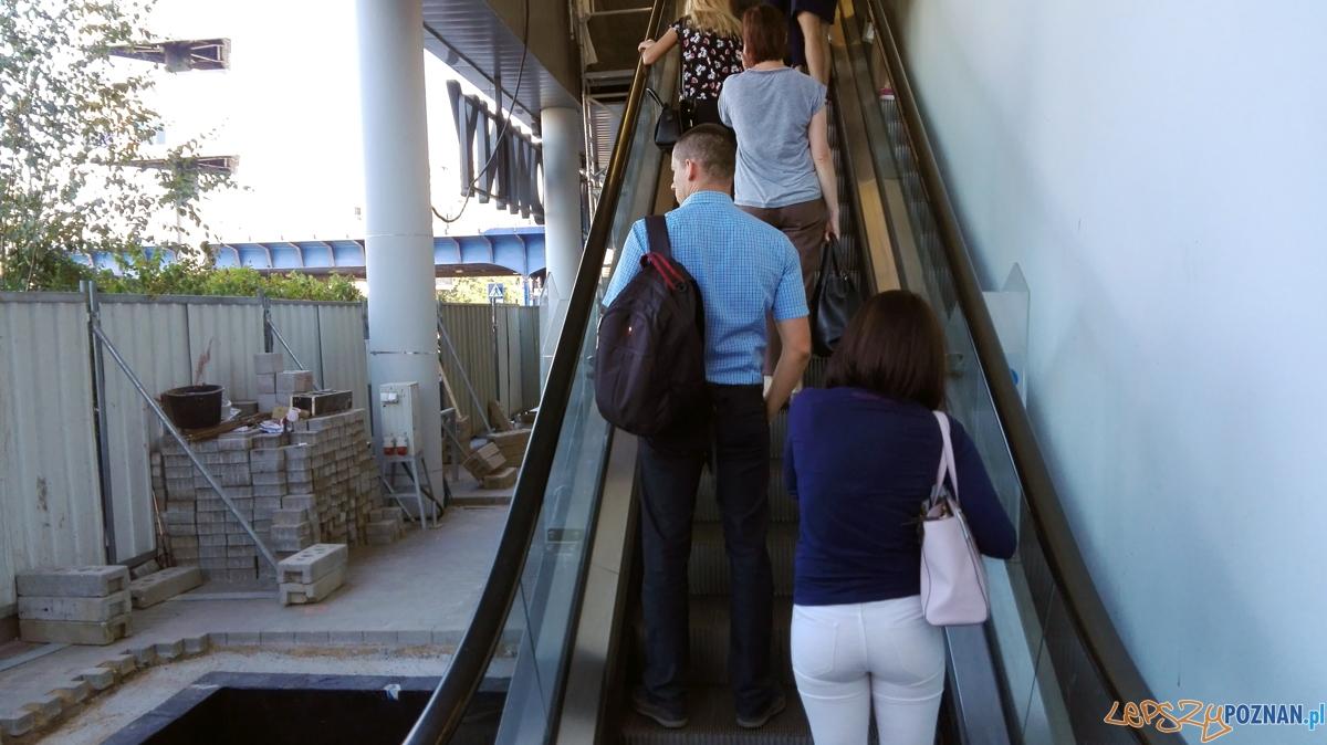 Ruchome schody na dworcu  Foto: UMP