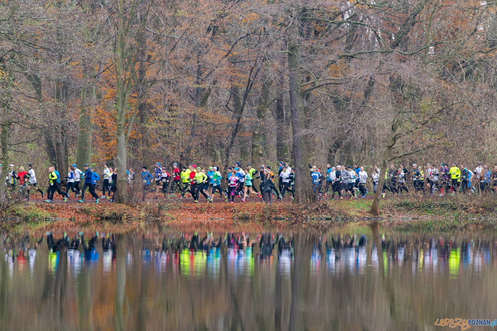 City Trail - 2. bieg wokół jeziora Rusałka  Foto: lepszyPOZNAN.pl / Piotr Rychter