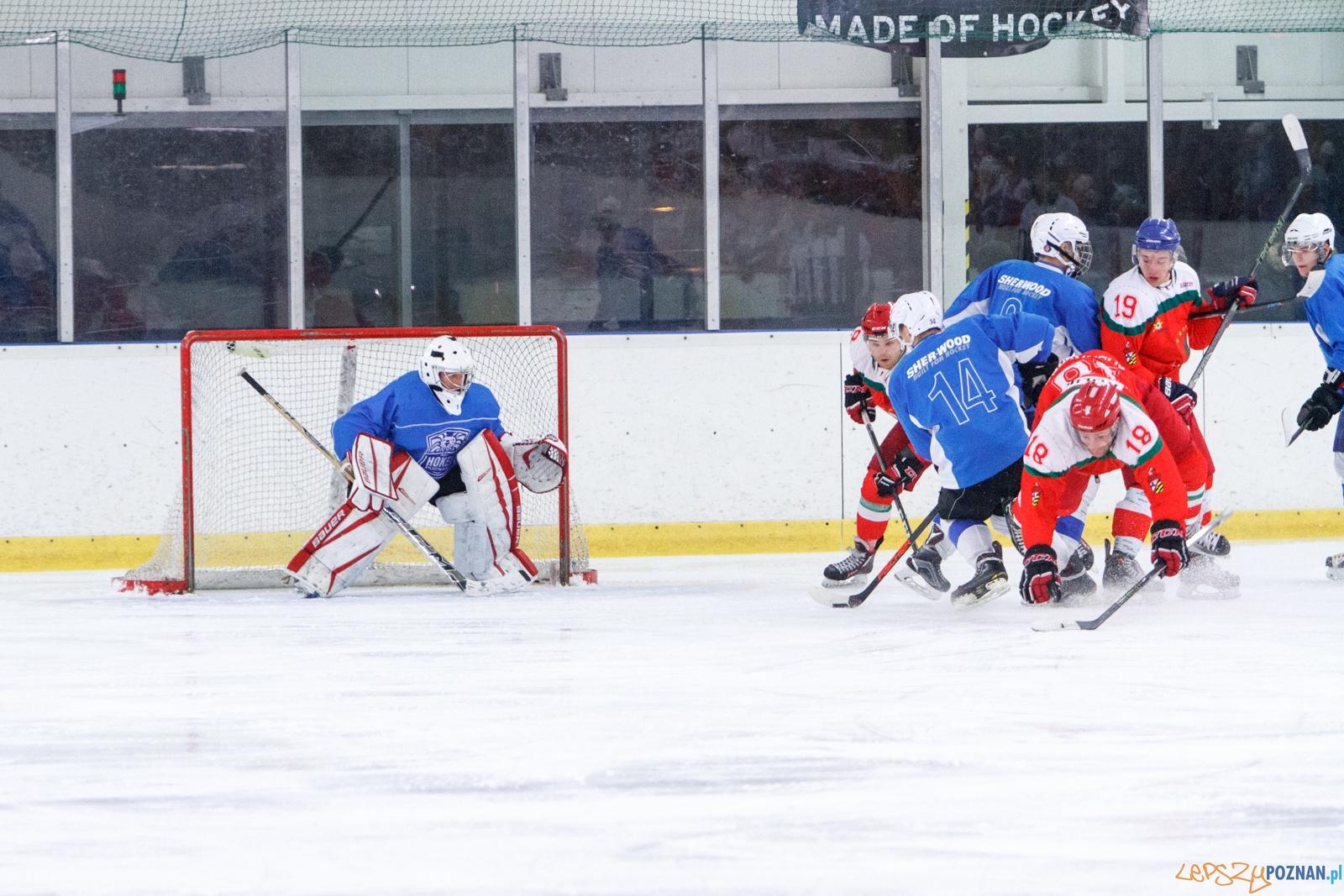 Hokej Poznań - Zagłębie Sosnowiec SA 2:15 - Poznań 18.12.201  Foto: LepszyPOZNAN.pl / Paweł Rychter