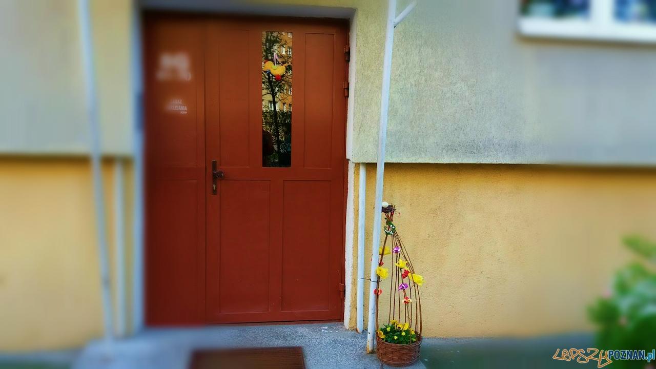 Szybka migawka - gotowi na Wielkanoc  Foto: lepszyPOZNAN.pl / gsm