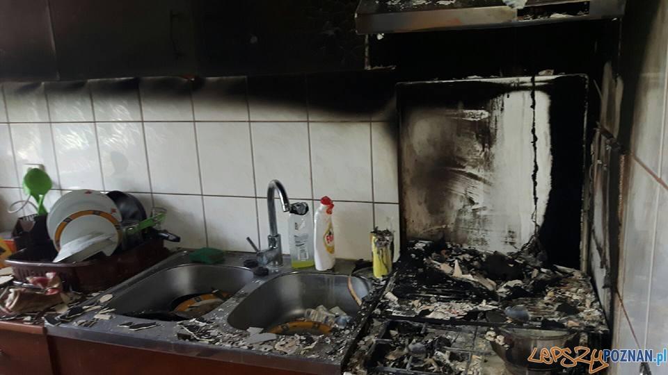 Pożar w kuchni  Foto: OSP Suchy Las
