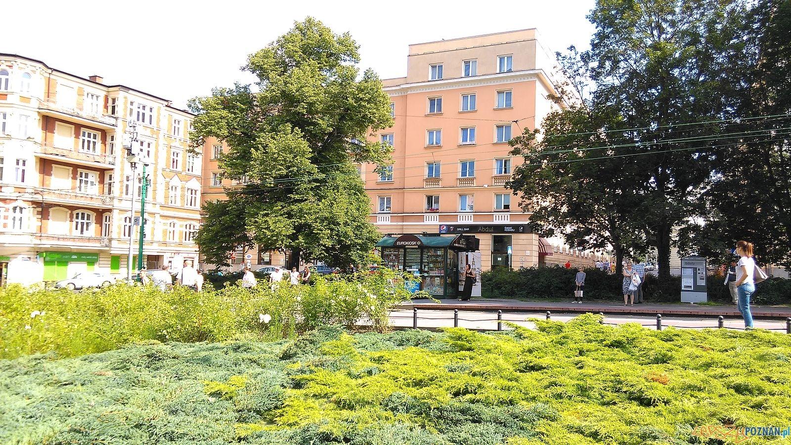 Plac Ratajskiego (5)  Foto: T. Dworek / ROSM
