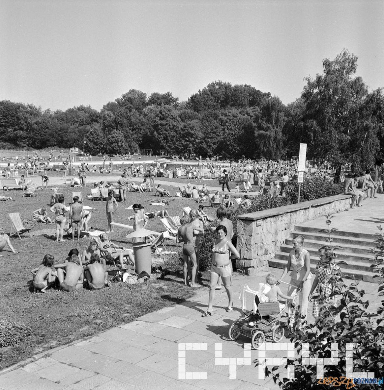 Park Kasprowicza - pływalnia 10.08.1975  Foto: Stanisław Wiktor / Cyryl