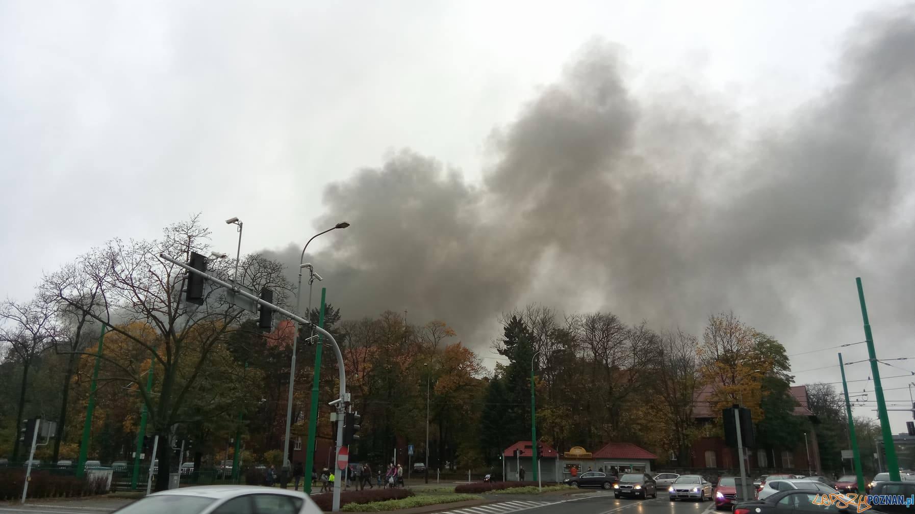 Pożar na Grunwaldzie - Poznań 25.10.2017 r.  Foto: Piotr