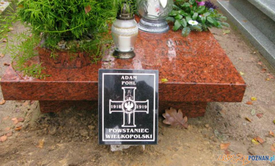 Groby powstańców wielkopolskich specjalnie oznakowane  Foto: Powiat Poznański