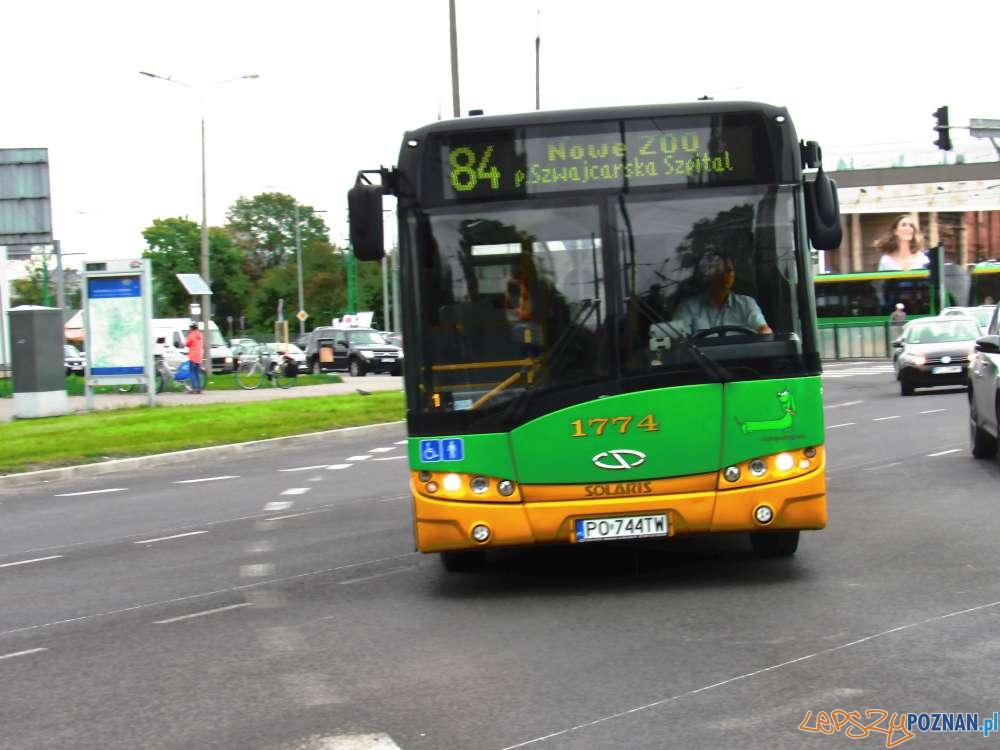 Autobus linii 84 do Nowego Zoo  Foto: ZTM