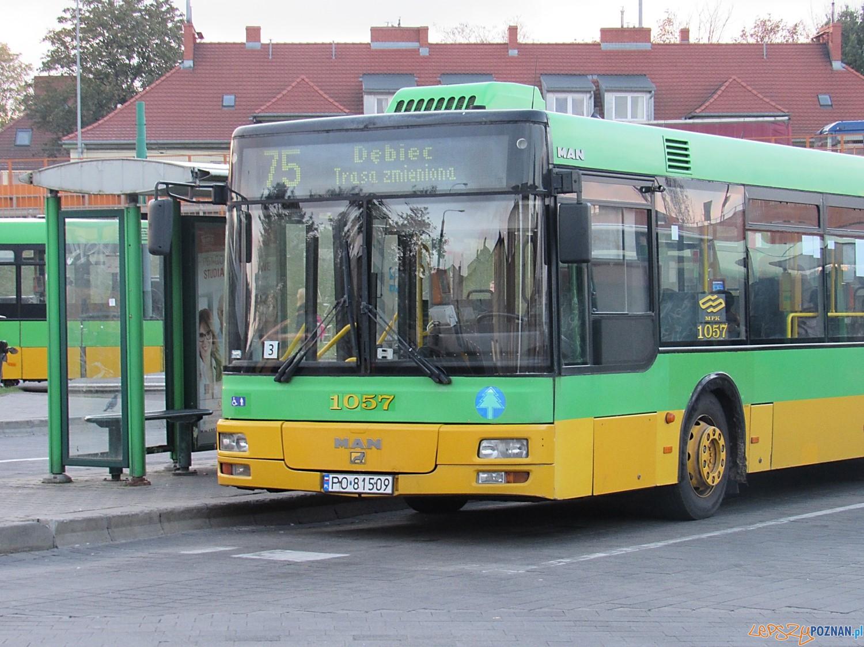 Autobus - linia 75 Górczyn  Foto: ZTM
