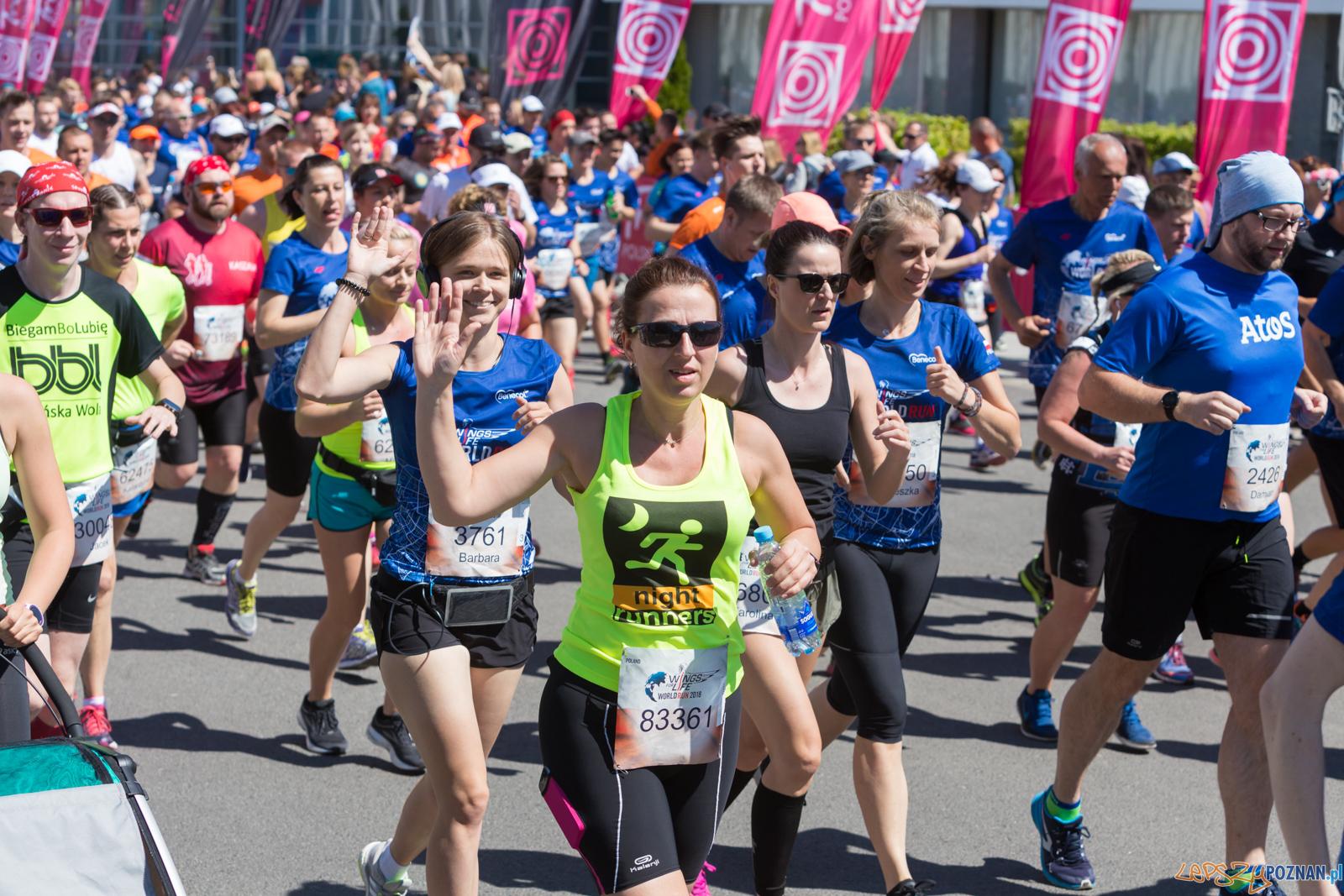 Wings For Life World Run 2018  Foto: lepszyPOZNAN.pl/Piotr Rychter