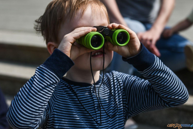 Brama Poznania - zajęcia dla dzieci  Foto: Brama Poznania / materiały prasowe