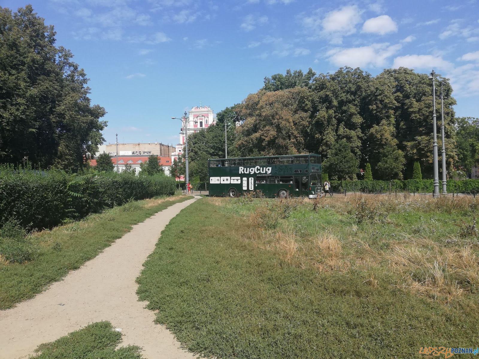 Podgórna - Zielona  Foto: T. Dworek