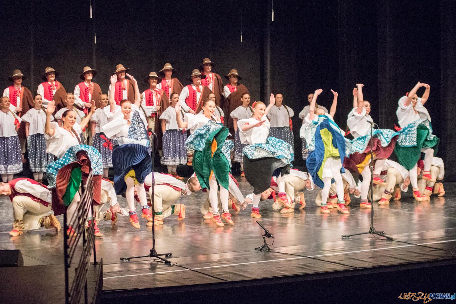 Zespół Pieśni i Tańca Ślask  Foto: lepszyPOZNAN.pl / Ewelina Jaśkowiak