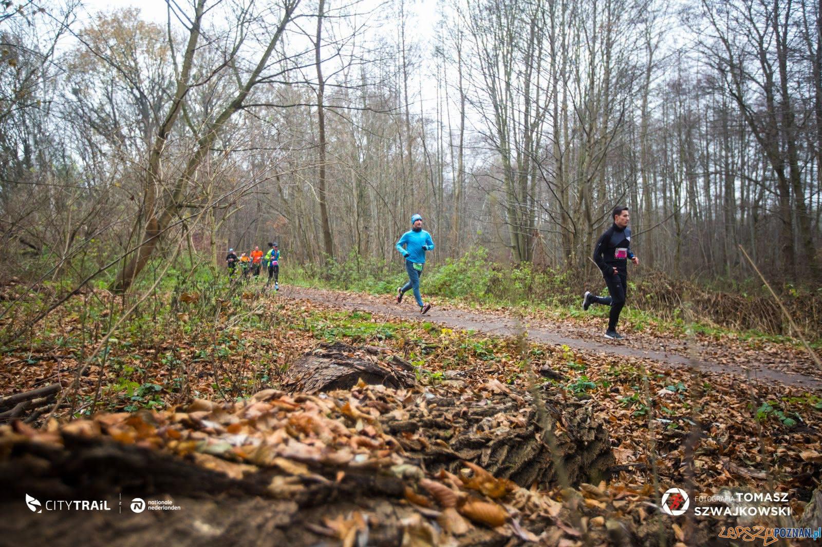 City Trail - bieanie nad Rusałką  Foto: Tomasz Szwejkowski / City Trail / materiały prasowe