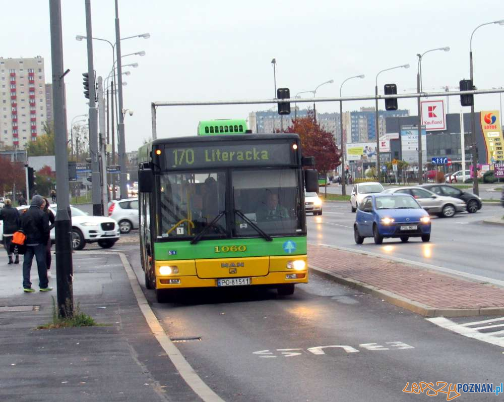 Autobusc linia nr 170  Foto: ZTM