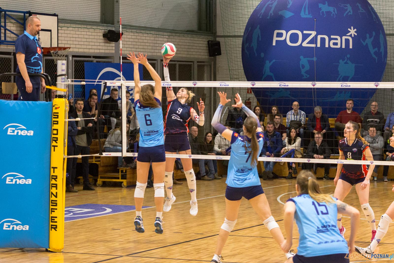 Enea Energetyk Poznań - Joker Mekro Świecie  Foto: lepszyPOZNAN.pl/Piotr Rychter