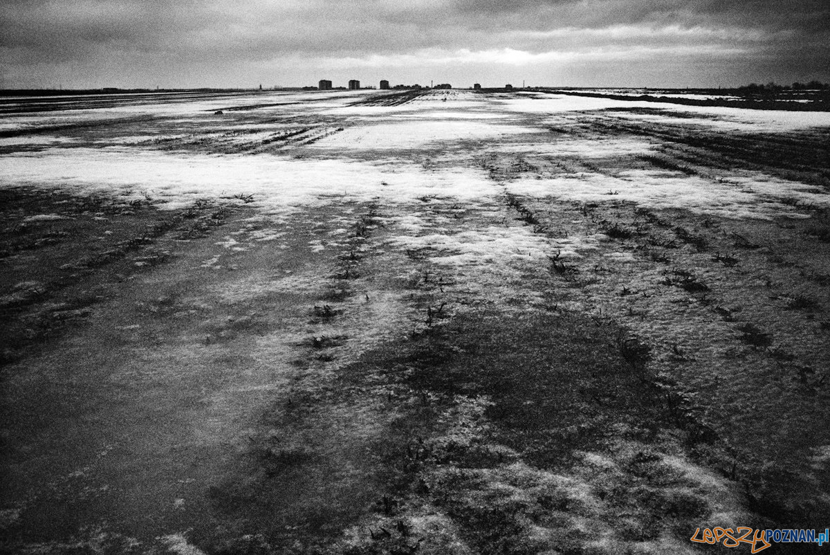 Lorenzo Castore - Land  Foto: materiały prasowe