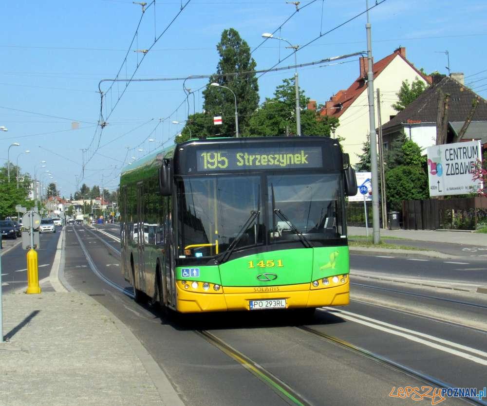 Autobus linii 195 [ZTM]  Foto: ZTM