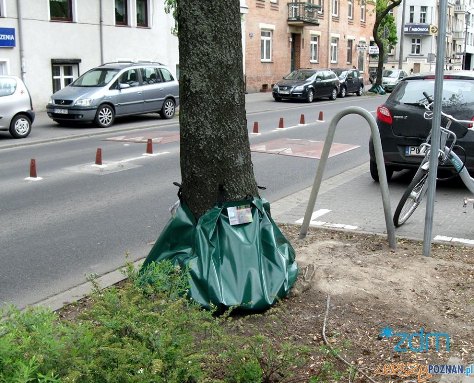 Hydrobufory  Foto: ZDM / informacje prasowe