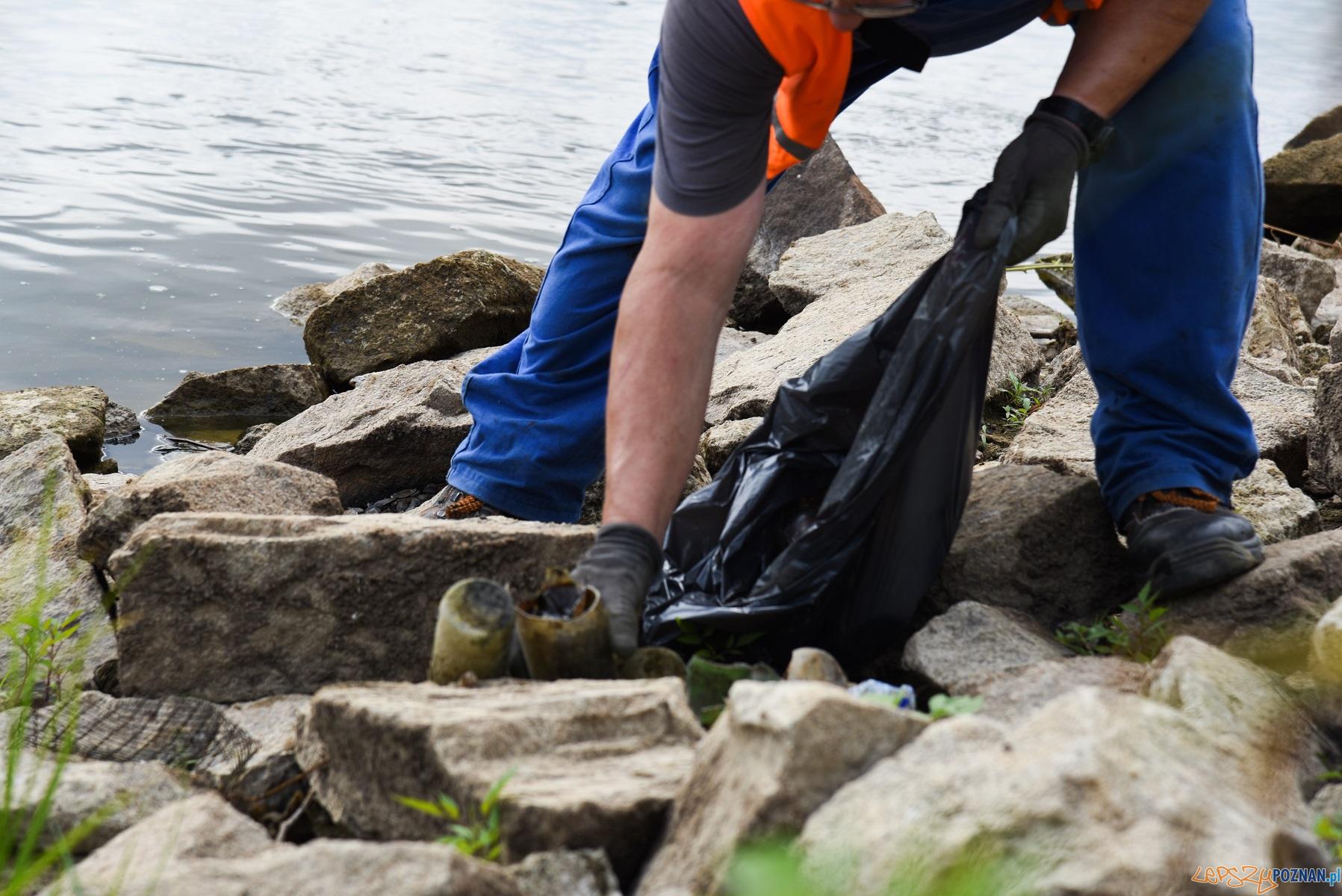 Sprzątanie brzegów Warty  Foto: materiały prasowe / UMP