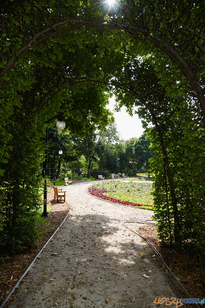 Rewitalizacja wodnego ogrodu na Cytadeli  Foto: materiały prasowe / UMP
