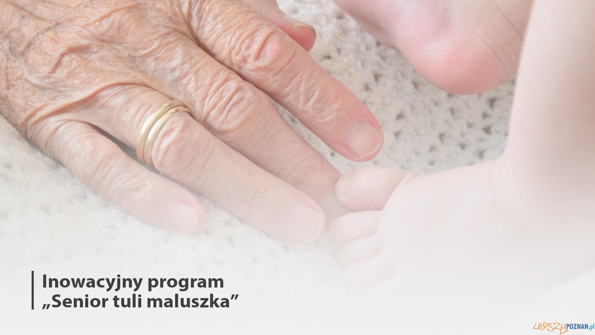 Senior maluszka tuli  Foto: materiały prasowe / UMP