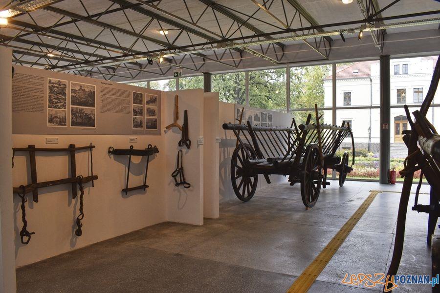 Muzeum Rolnictwa w Szreniawie (4) Foto: materiały prasowe muzeum
