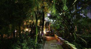 Noc w Palmiarni w 2019 roku  Foto: materiały prasowe