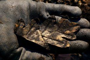Liść - archeolodzy na Starym Rynku  Foto: Kateriny Zisopulu-Bleja / Muzeum Archeologiczne