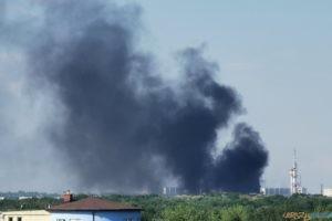 Pożar hali Bros na Podolanach  Foto: PIT JAN /tt