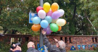 Alejka Orderu Uśmiechu  Foto: