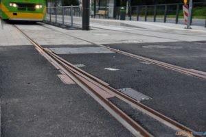 Krolowej Jadwigi tramwaj torowisko przystanek 2017_09_03 (22)  Foto: UMP / materiały prasowe